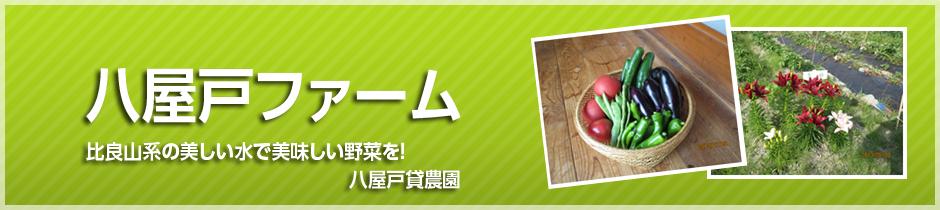 比良山麓に位置する大津市八屋戸で、新鮮で安全な野菜作りを始めたい方に安く提供します。